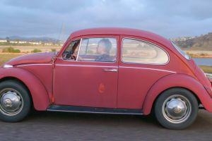 Andrés Manuel López Obrador fue responsable de la extinción del Volkswagen Beetle en México