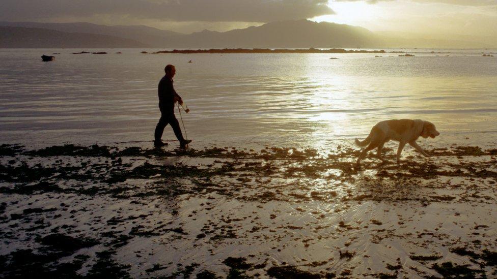 """La marea sizigia puede """"llevarse"""" el mar de la costa más de lo usual."""