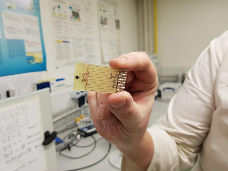 Crean prueba rápida de sepsis que podría salvar millones de vidas