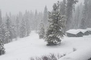Tormenta de nieve deja varadas a más de un centenar de personas en parque nacional de California