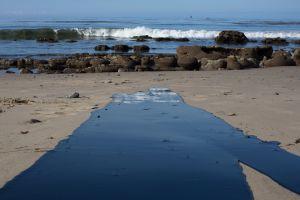 Derrame de petróleo en la costa de California inició la conciencia ecológica hace 50 años