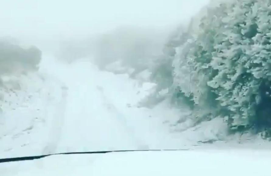 Nieve en Hawai, la isla se suma a la ola invernal sin precedentes