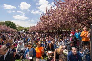 Marmota de NYC coincide con la de Pennsylvania: la primavera llega pronto a EEUU
