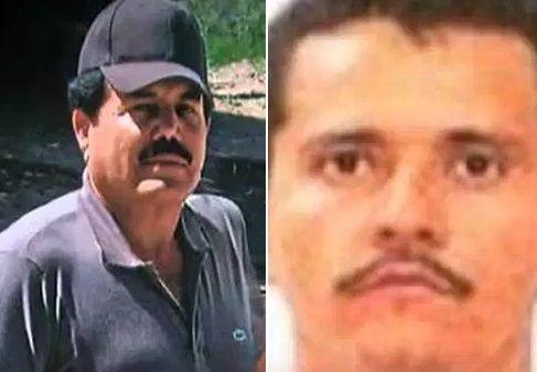 Las garras del Cártel de Sinaloa y el CJNG en Holanda, ponen en alerta a autoridades