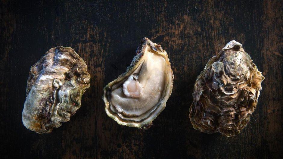 ¿Realmente existen comidas afrodisíacas que aumentan el deseo sexual?