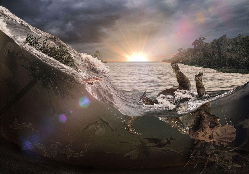 Chicxulub: el hallazgo que revela lo que ocurrió después de que cayera el asteroide que cambió nuestro planeta