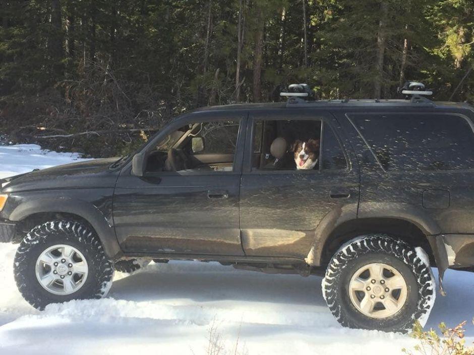 Por una nevada, quedó atrapado durante 5 días en su auto y sobrevivió con salsa para tacos