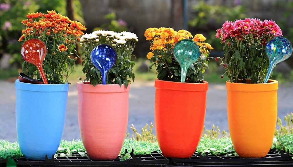 5 globos de regado automático para no preocuparte por regar tus plantas a diario