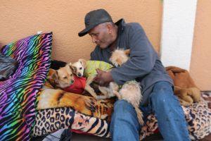 Refugio para desamparados...  ¿y mascotas?