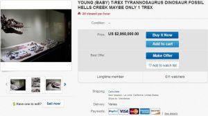 La subasta de un fósil de dinosaurio en eBay que causa indignación a los científicos
