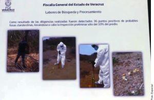 Encuentran 36 fosas clandestinas en un solo predio en Veracruz