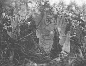 Las Hadas de Cottingley: las misteriosas fotografías que aún cautivan al público un siglo después