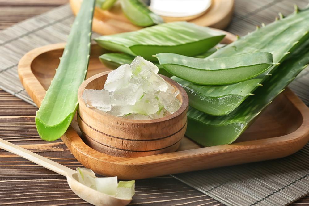 El Aloe Vera y sus extraordinarios beneficios para la salud