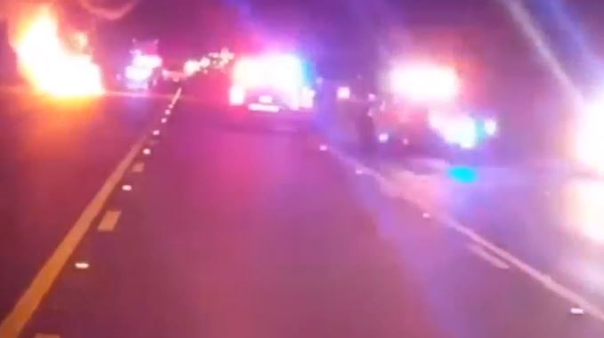 """Vaca suelta causa accidente donde los conductores """"milagrosamente"""" salen con vida"""