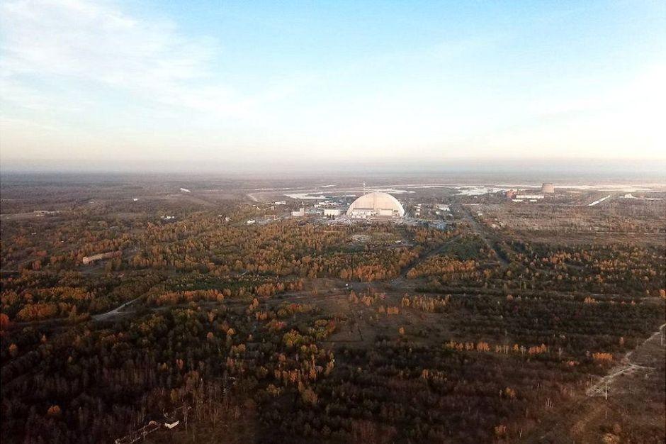 """Chernobyl: cómo es el """"bosque rojo"""", uno de los lugares más radiactivos del mundo"""
