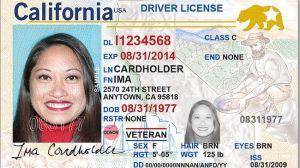 Inmigrantes logran por error licencia de manejo oficial como si fueran ciudadanos. Tiene estrella dorada