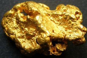 Encuentra una pepa de oro por valor de $25,000 dólares mientras pasea a su perro
