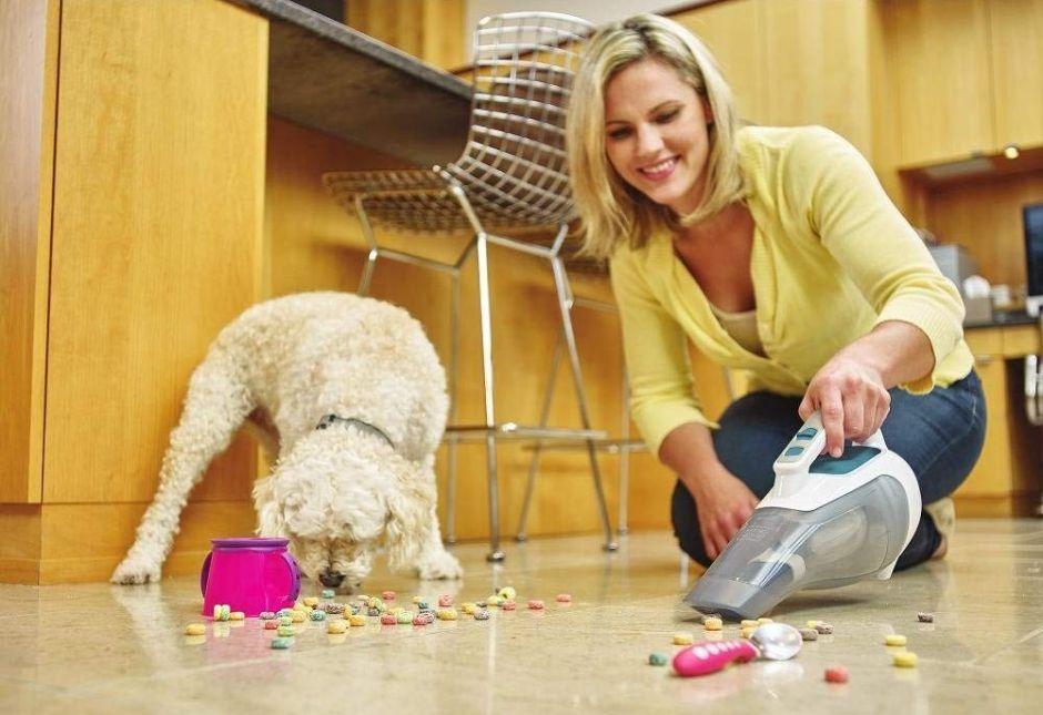 ¿Cuál es la mejora aspiradora para limpiar la casa?