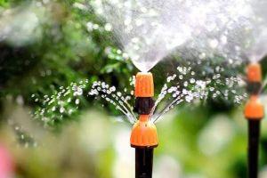 Los 7 mejores equipos de riego para mantener las flores de tu jardín en buen estado