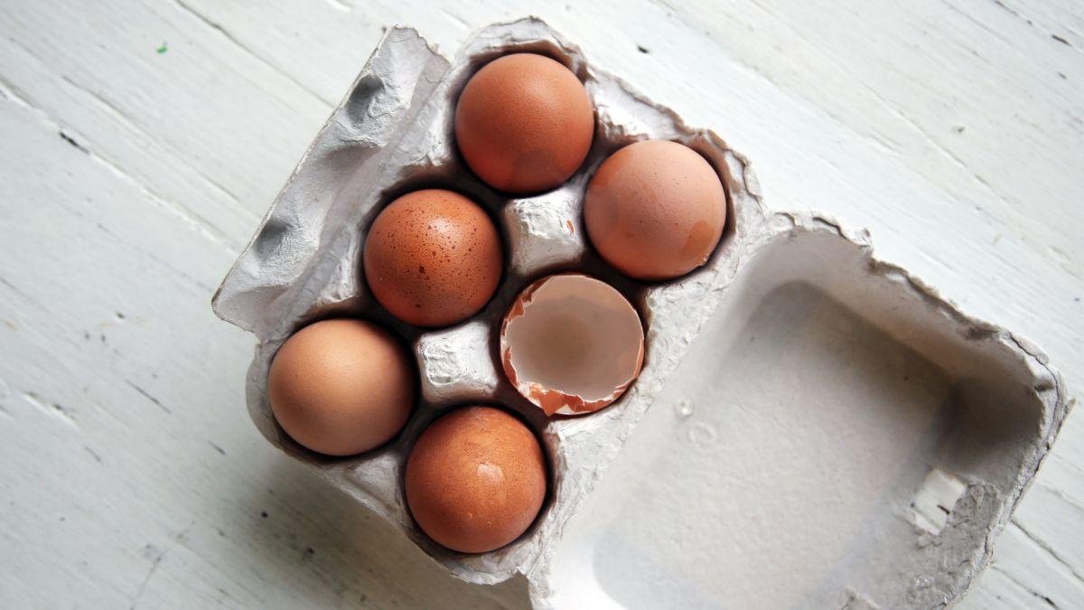 Prácticos consejos para darle vida a las cáscaras de huevo.