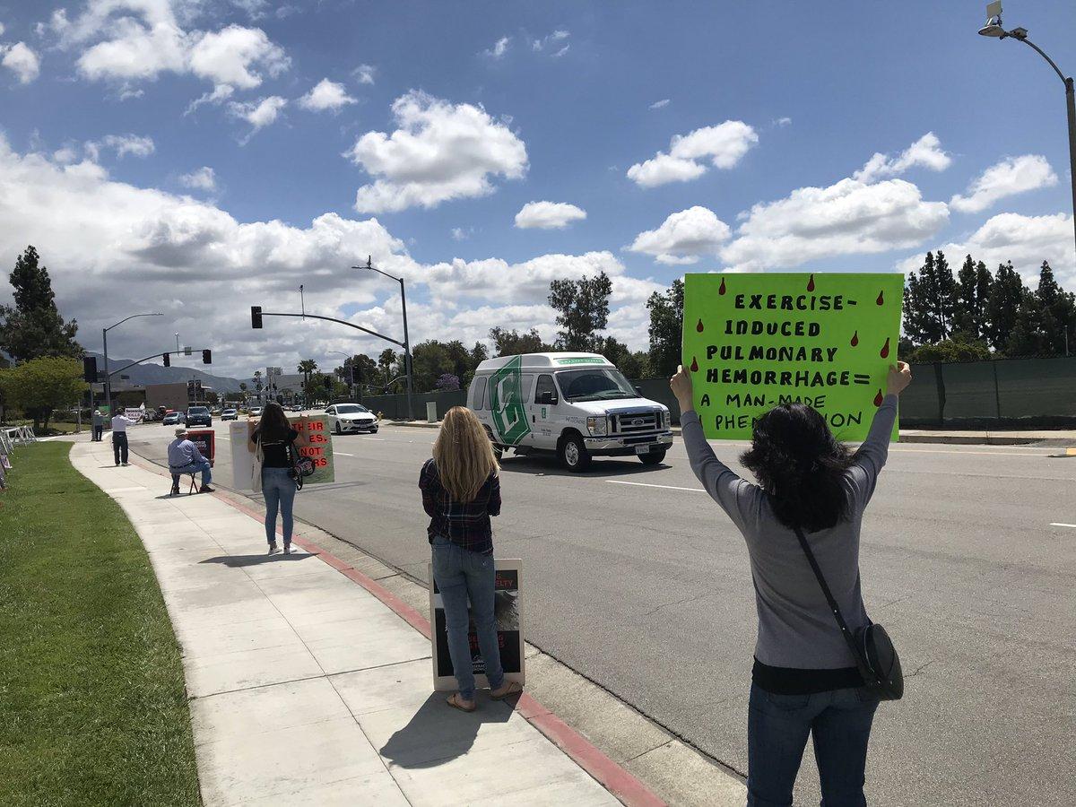 Algunos grupos piden que se prohíban las carreras de caballos en California. (suminsitrada)