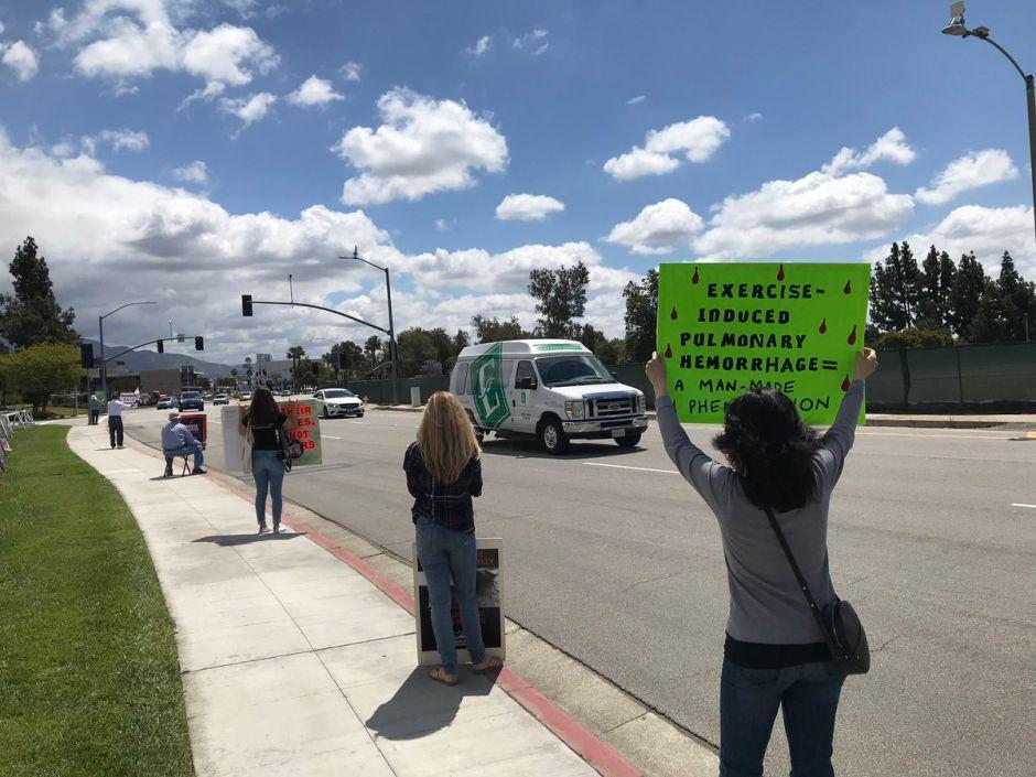 Activistas protestan afuera del hipódromo de Santa Anita