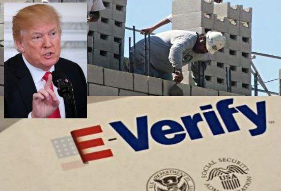 Trump prepara fuerte paquete de medidas migratorias