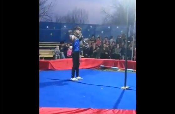 Serpiente estrangula a su entrenador durante presentación en vivo
