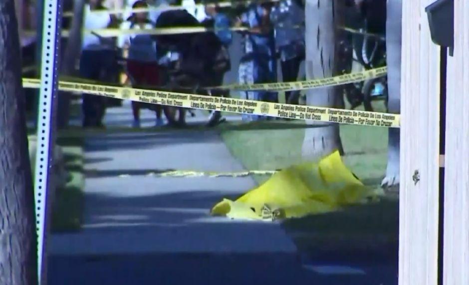 Joven de 29 años recibe disparo fatal en la cabeza en la ciudad de Venice