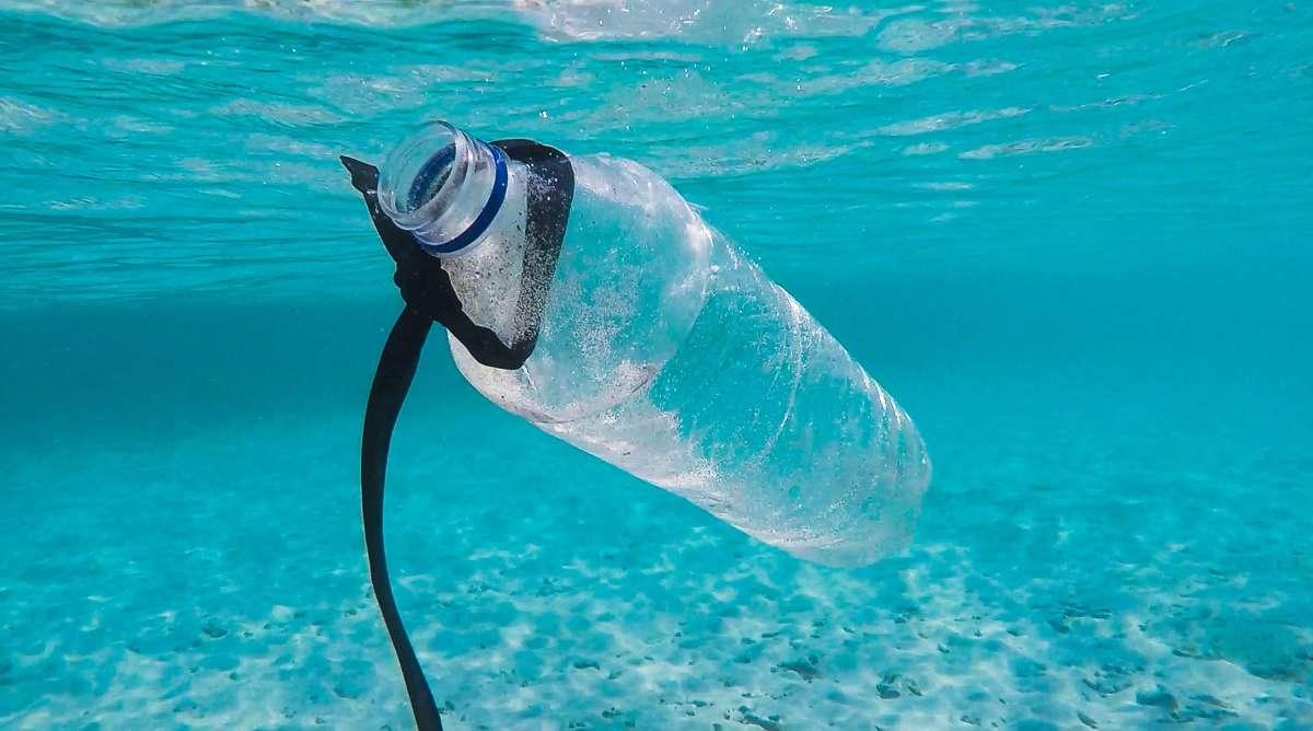 El adolescente que ganó un premio de Google por su invento para retirar  microplásticos del agua | La Opinión