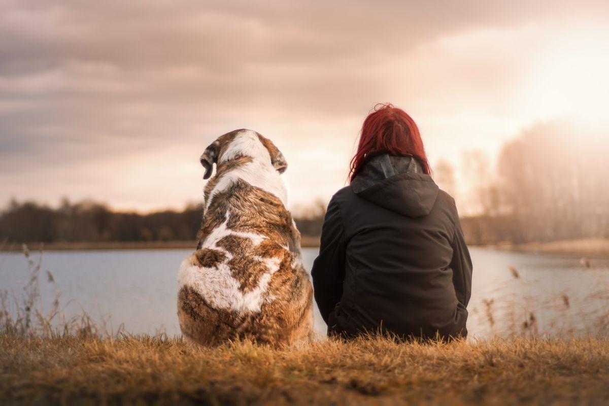 La muerte de un perro es igual de difícil de superar que la de un ser querido