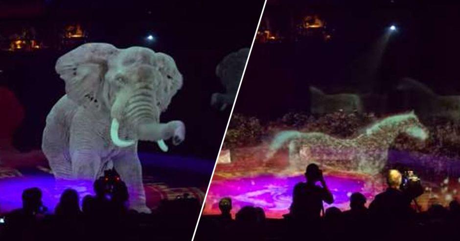 Increíble la iniciativa de este circo alemán, ¡las imágenes impresionan!