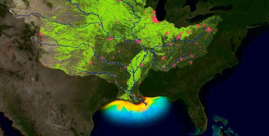 """La zona muerta que resurgió en el Golfo de México como una """"de las peores de la historia"""""""
