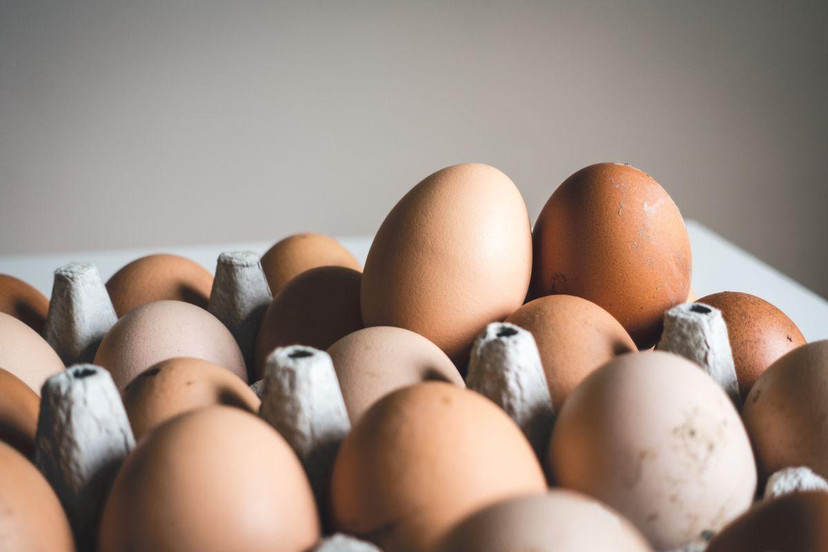 ¿El huevo es bueno o malo para cuidar de nuestro corazón?