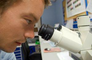 Crean medicamento contra el cáncer capaz de frenar metástasis y reducir tumores