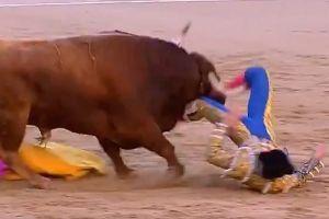 Dos matadores sufren horribles cornadas en Las Ventas en menos de 24 horas