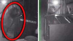 VÍDEO: Un oso irrumpe en un dispensador de marihuana