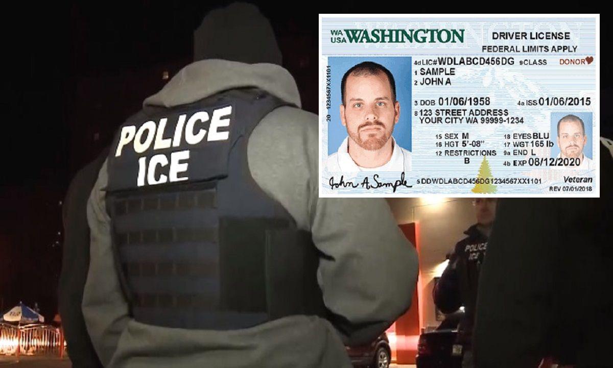Expertos alertan que peligra información de licencias de inmigrantes con métodos de ICE