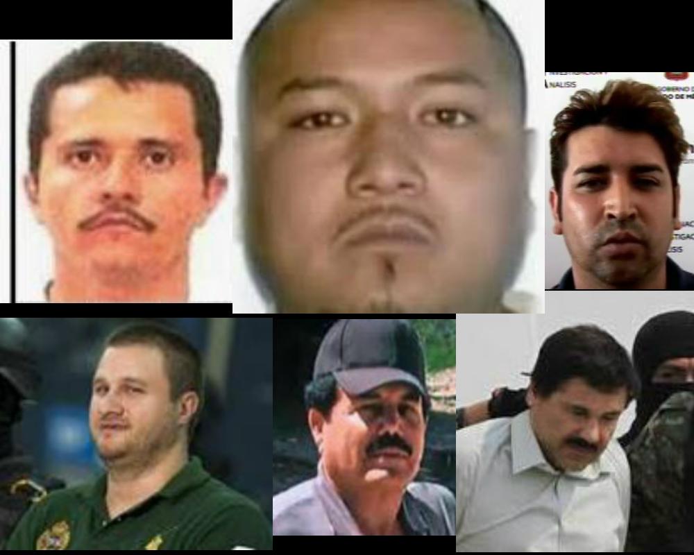 Narco apodos: El Mencho, El Mayo, El Marro, El Chapo. Les dicen así por esta razón