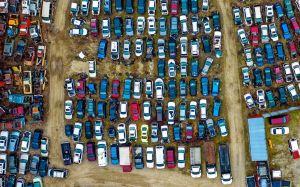 Un taller mecánico abandonó un terreno de 20 acres lleno de autos clásicos