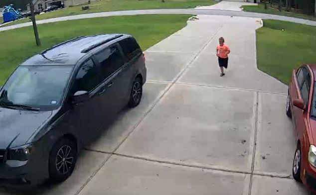 Video: Vecino rescata a niño de un ataque de perro pitbull
