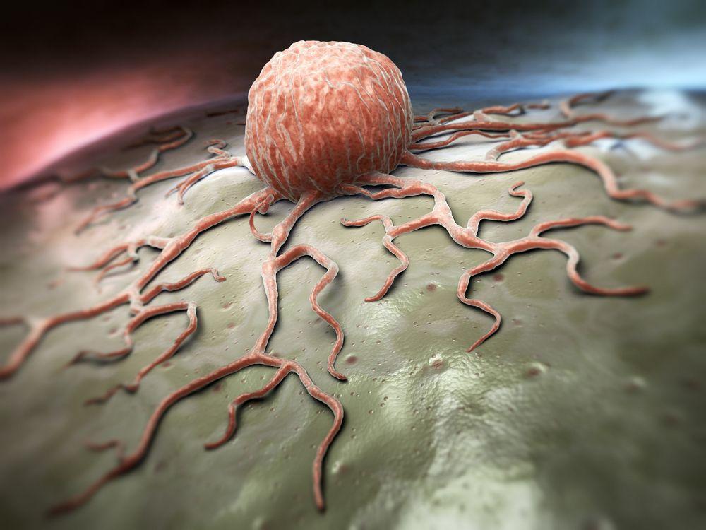 Las células cancerosas consumen rápidamente a las células sanas.