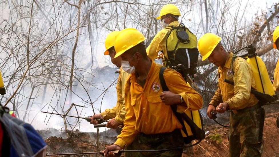 Un incendio ha afectado en Bolivia en la Chiquitanía.