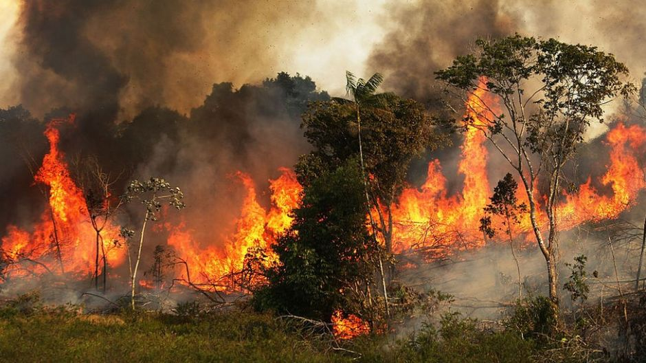 Incendios en el Amazonas: lo que se sabe de cómo se originaron los incendios que están causando estragos