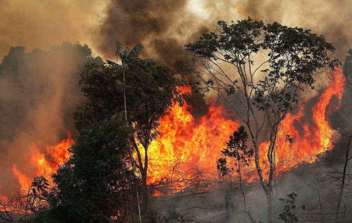 Según el INPE, ha habido 74.155 incendios en Brasil en lo que va del año, la mayoría de los cuales estallaron en el Amazonas. Eso representa un salto asombroso de más del 80% respecto al año pasado.