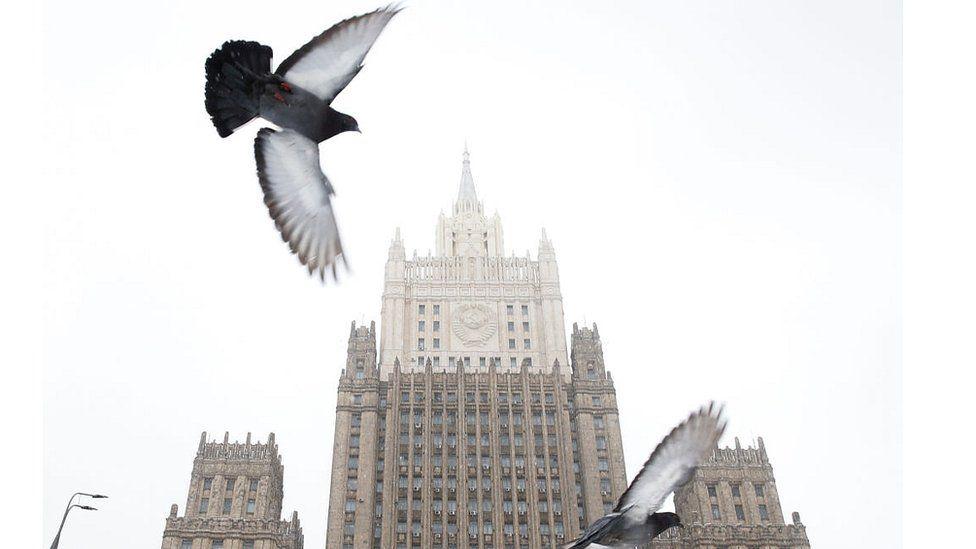 Cómo la CIA usó palomas mensajeras para espionaje contra la Unión Soviética