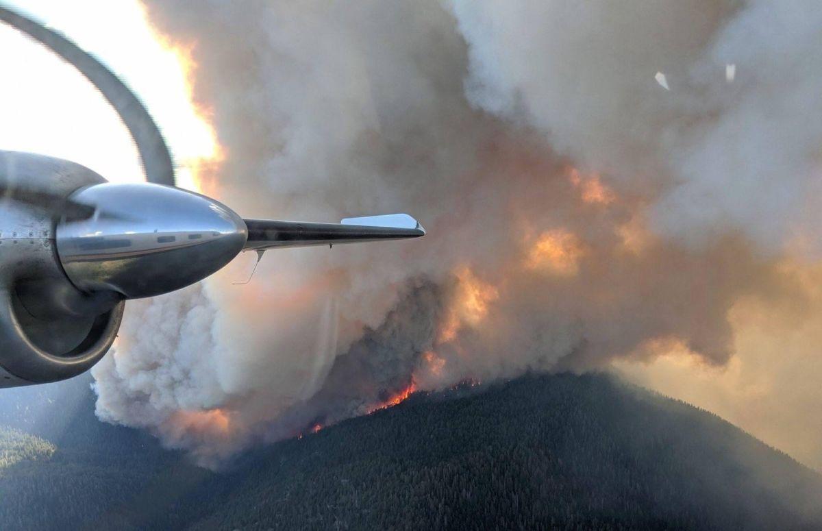 Más de mil bomberos luchan contra el incendio Walker, el mayor de California en 2019