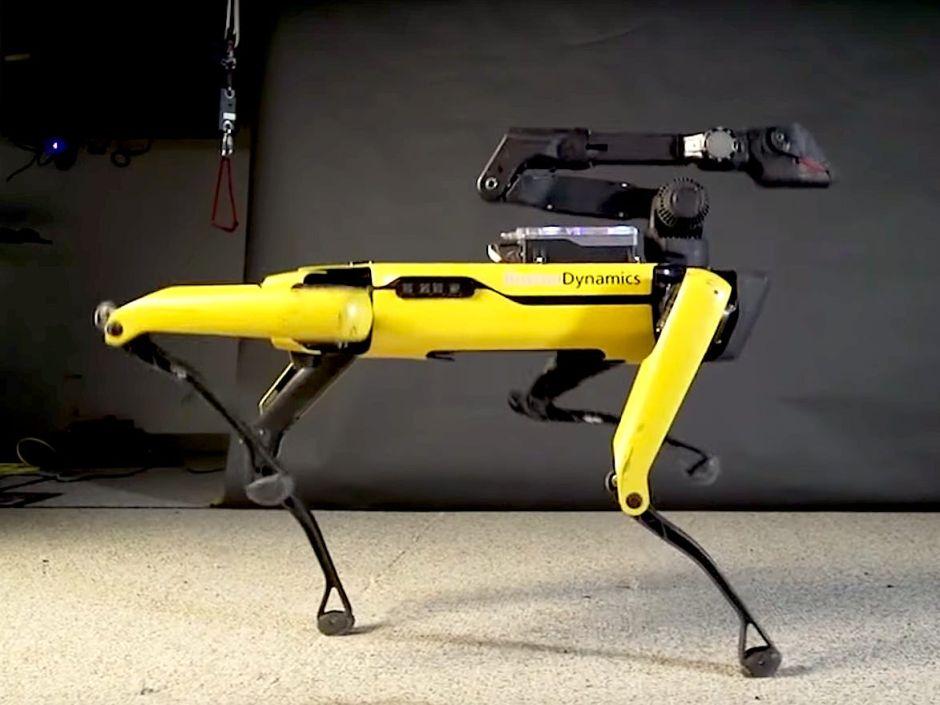 Crean terrorífico robot en forma de perro, te dejará asombrado