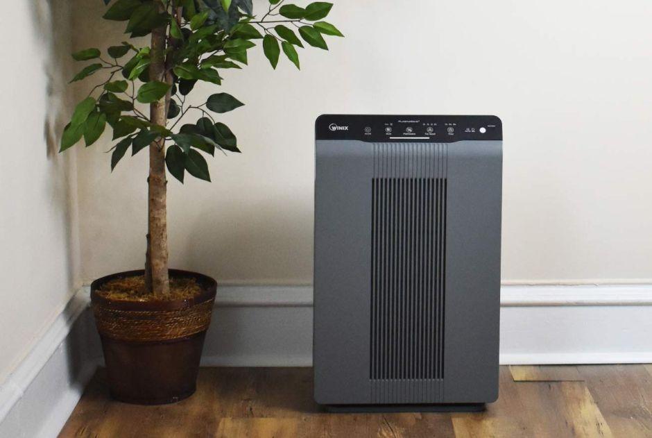 Los 5 mejores purificadores de aire para eliminar los ...