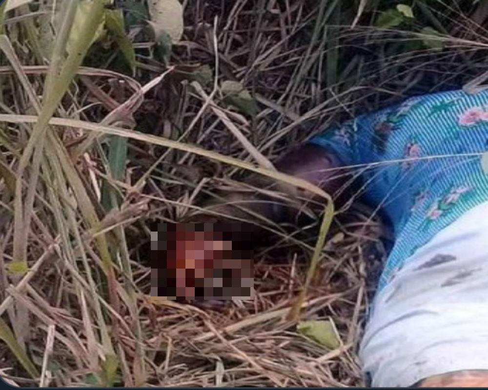 A mujer le mutilan los dedos y la dejan muerta en zona que se pelean el CJNG y Los Zetas